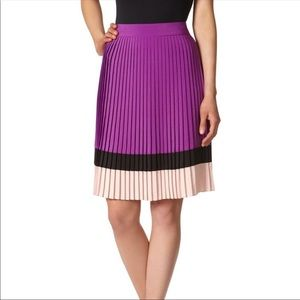 The Limited Pleated Colorblock Skirt Size Large